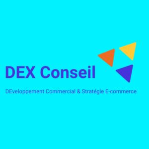 DEX Conseil sites web 94 sucy-en-brie